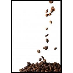 CAFE EN GRANO TORREFACTO...