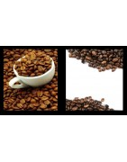 COMPRAR PROFESIONAL VENDING CAFE EN GRANO